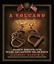 A Volcano Beneath the Snow: John Brown's War Against Slavery