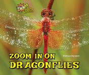 Zoom In on Dragonflies
