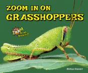 Zoom In on Grasshoppers