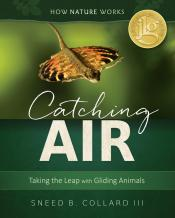 Catching Air: Making the Leap with Gliding Animals