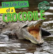 The Life Cycle of a Crocodile