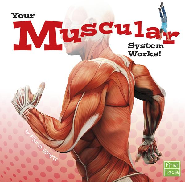 junior library guild : your muscular system works! by flora brett, Muscles