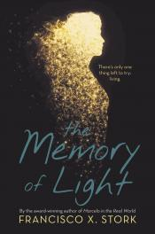 The Memory of Light (Audiobook)