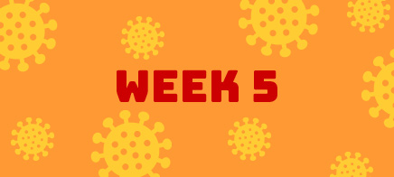 Quaran-teen Week 5