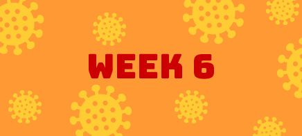 Quaran-teen Week 6