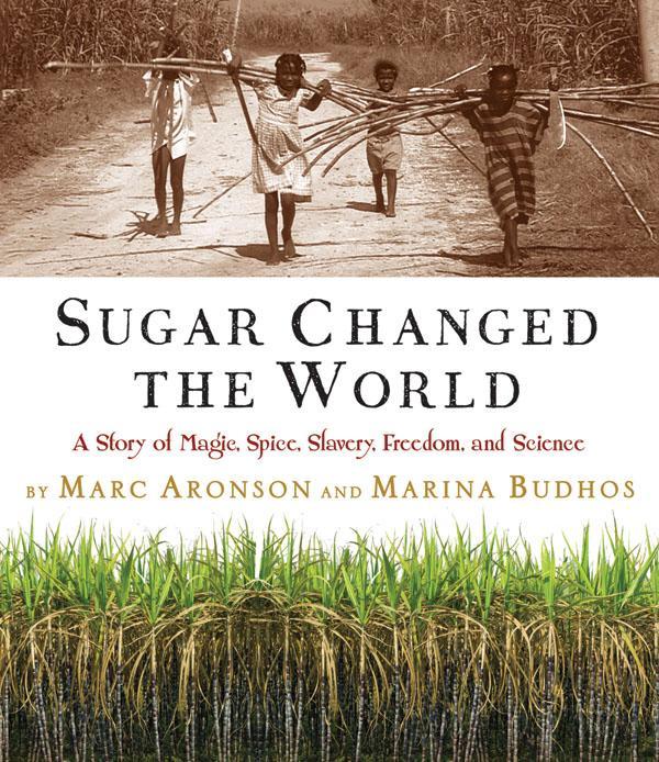 the sugar trade essay