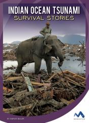 Indian Ocean Tsunami: Survival Stories (Ebook)