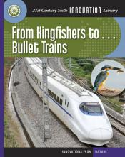 From Kingfishers to . . . Bullet Trains