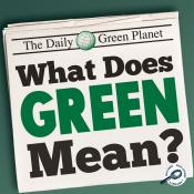 What Does Green Mean? (ebook)