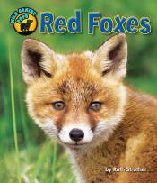 Red Foxes (ebook)
